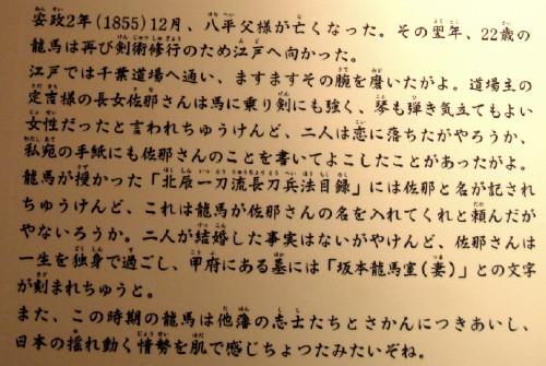 DSC06442-d.jpg